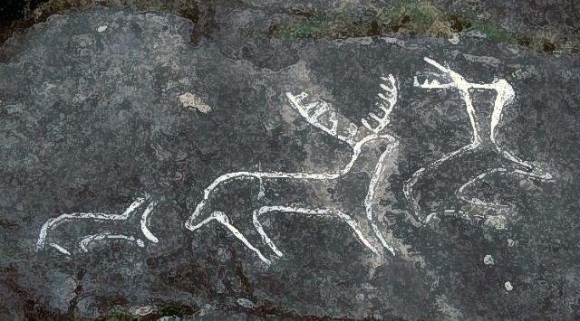 Outeiro de Cogoludo com representação de Caça Selvagem, segundo A. Pena