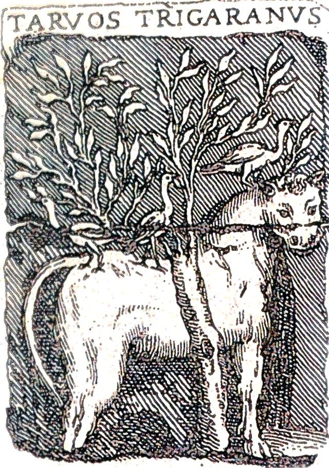 arvos Trigaranus do monumento aos Nautes Parisiacae de Nôtre Dame. Paris. O touro epresenta ao sol que con tres pasos circumvala e toma posesión do mundo, do ceo, do mar e do inframundo da terra