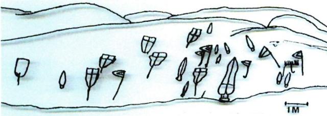 Pedra das Procesións, Auga da Laxe