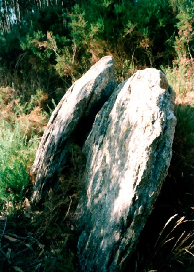 Monte de Nenos, Narón Duas grandes pedras destinadas para a coberta dum dólmen de galeria, que por um arrependimento não se chegou a construir e se deixaram ao pé da canteira.